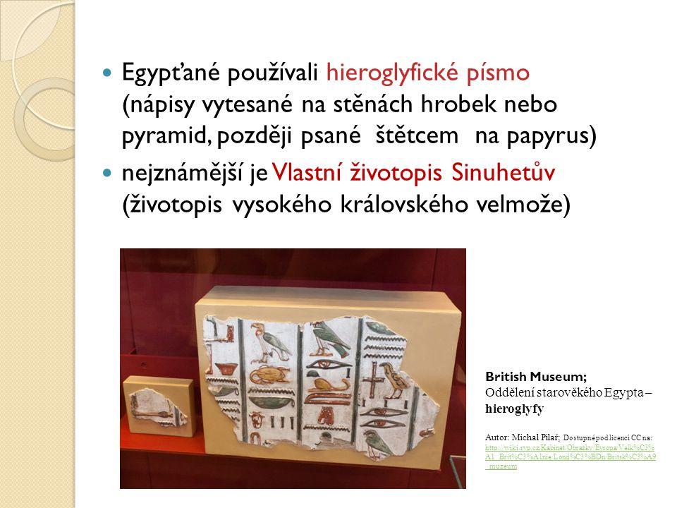 Egypťané používali hieroglyfické písmo (nápisy vytesané na stěnách hrobek nebo pyramid, později psané štětcem na papyrus)