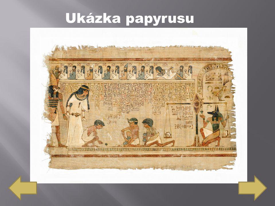 Ukázka papyrusu