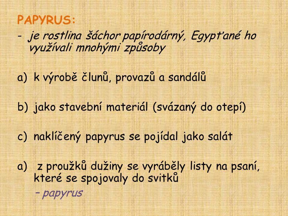 PAPYRUS: je rostlina šáchor papírodárný, Egypťané ho využívali mnohými způsoby. k výrobě člunů, provazů a sandálů.