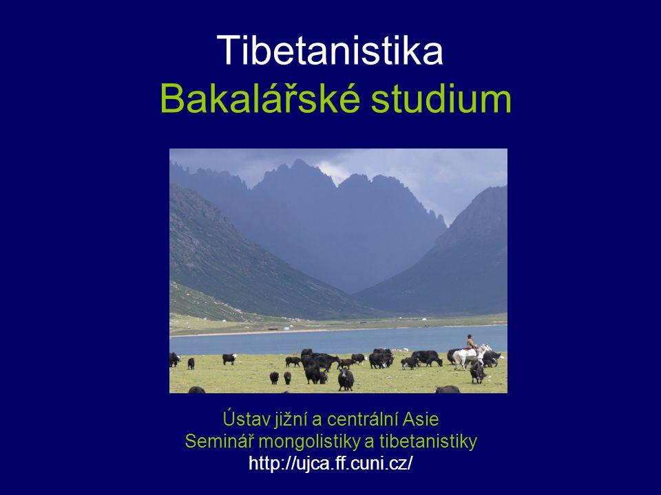 Tibetanistika Bakalářské studium