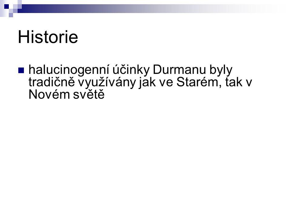 Historie halucinogenní účinky Durmanu byly tradičně využívány jak ve Starém, tak v Novém světě