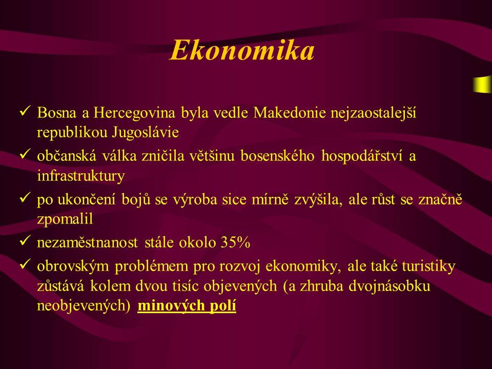 Ekonomika Bosna a Hercegovina byla vedle Makedonie nejzaostalejší republikou Jugoslávie.