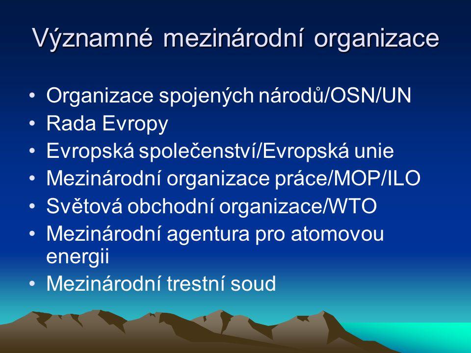 Významné mezinárodní organizace