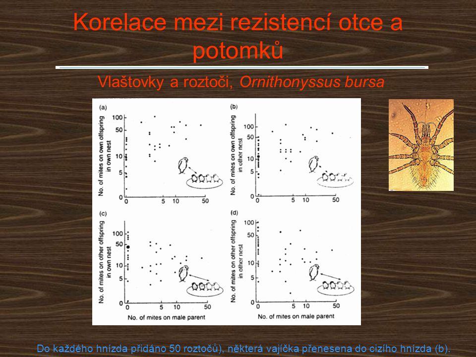 Korelace mezi rezistencí otce a potomků Vlaštovky a roztoči, Ornithonyssus bursa