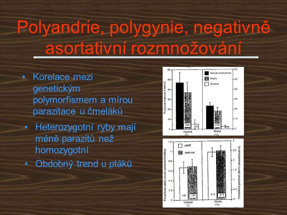 Polyandrie, polygynie, negativně asortativní rozmnožování