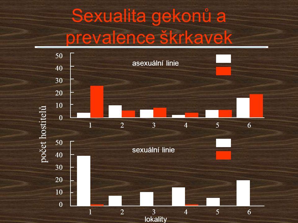 Sexualita gekonů a prevalence škrkavek