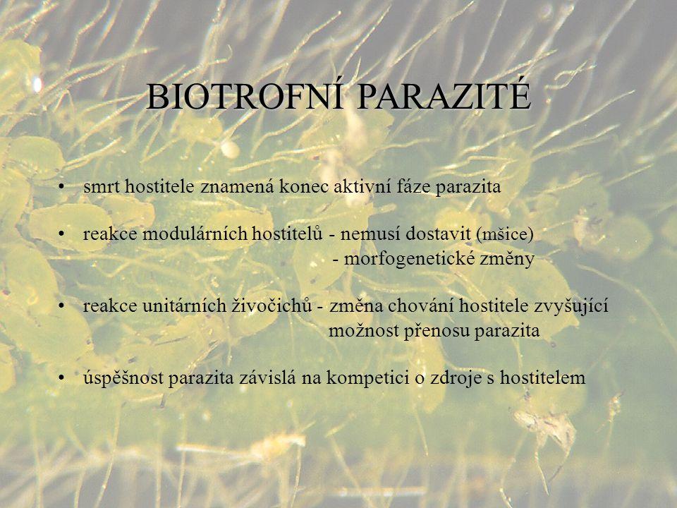 BIOTROFNÍ PARAZITÉ smrt hostitele znamená konec aktivní fáze parazita