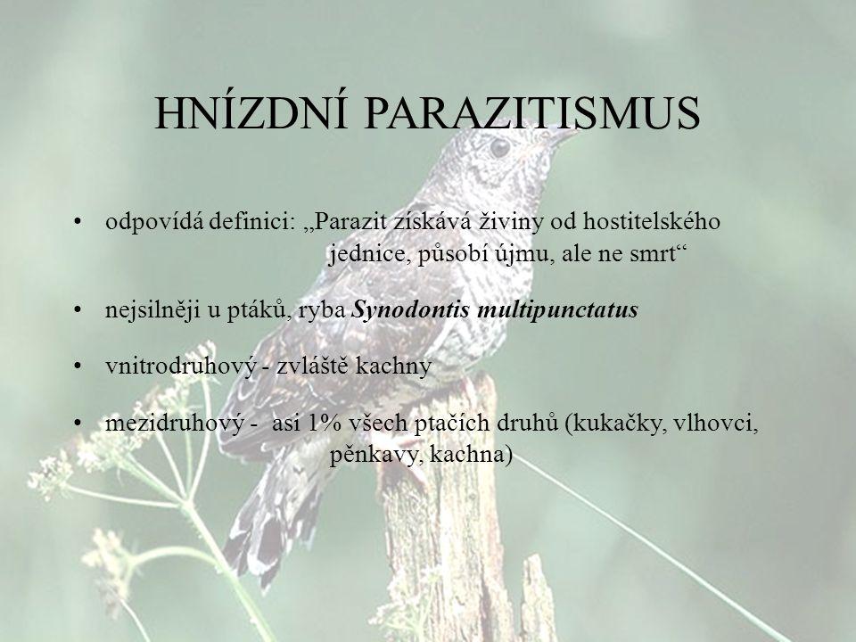 """HNÍZDNÍ PARAZITISMUS odpovídá definici: """"Parazit získává živiny od hostitelského jednice, působí újmu, ale ne smrt"""