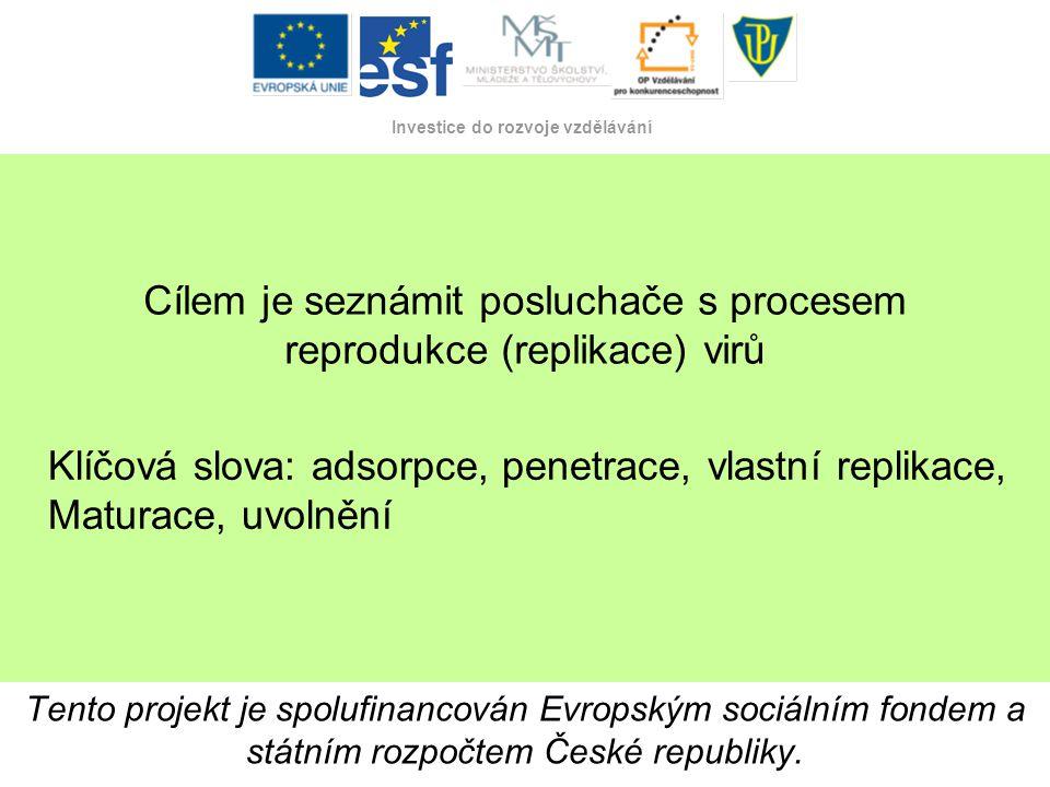Cílem je seznámit posluchače s procesem reprodukce (replikace) virů