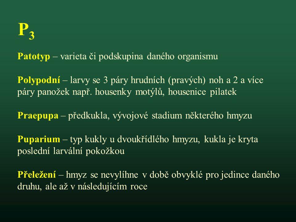 P3 Patotyp – varieta či podskupina daného organismu