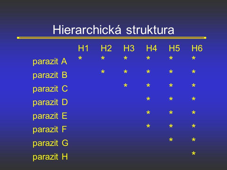 Hierarchická struktura