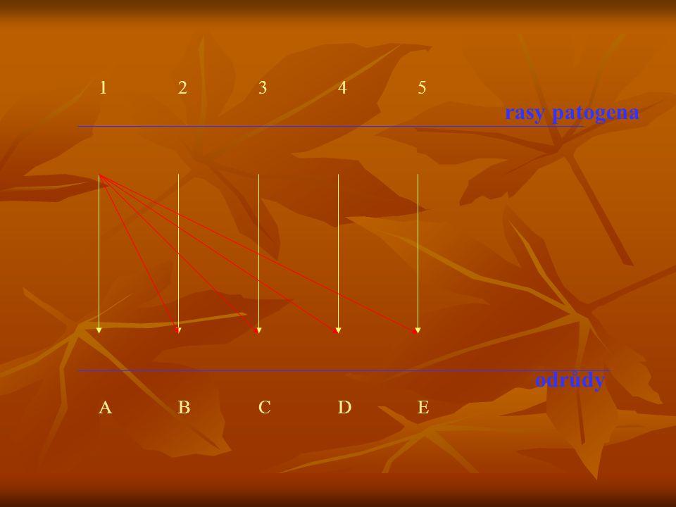 1 2 3 4 5 rasy patogena odrůdy A B C D E