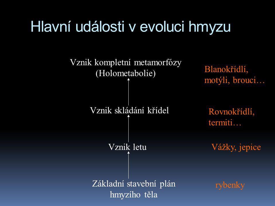 Hlavní události v evoluci hmyzu