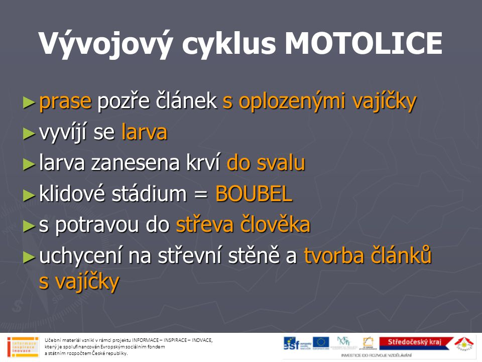 Vývojový cyklus MOTOLICE