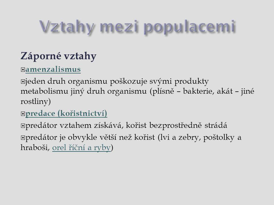 Vztahy mezi populacemi