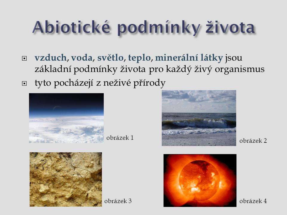Abiotické podmínky života