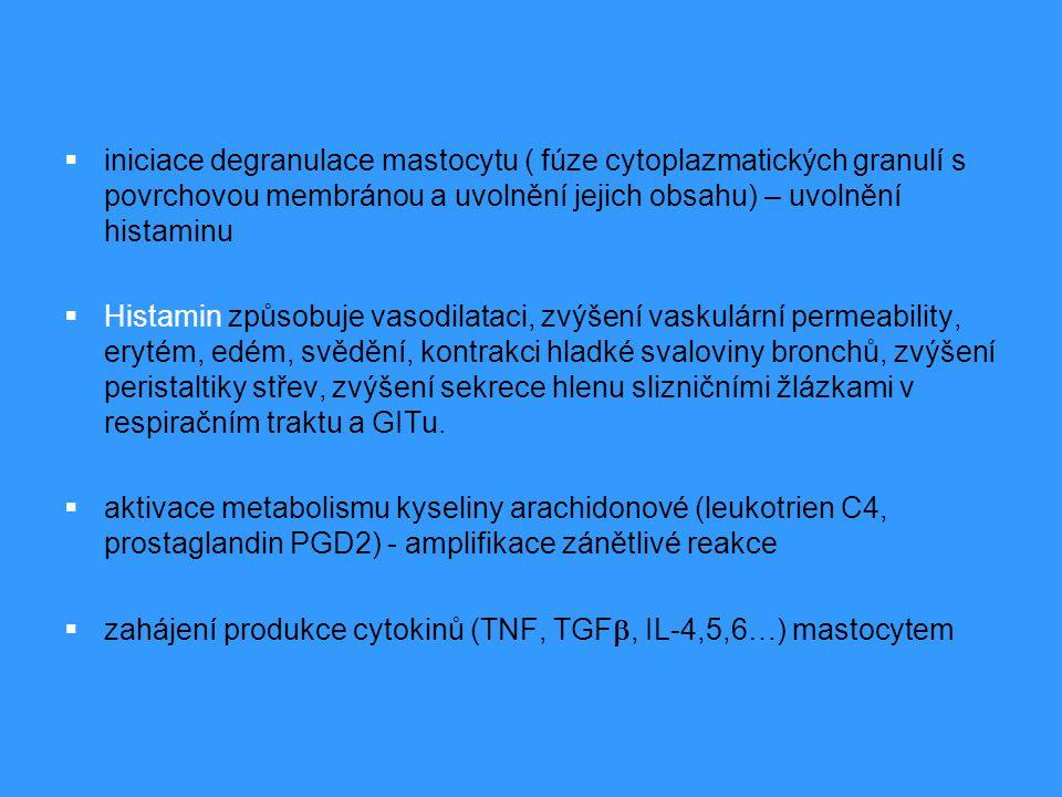 iniciace degranulace mastocytu ( fúze cytoplazmatických granulí s povrchovou membránou a uvolnění jejich obsahu) – uvolnění histaminu