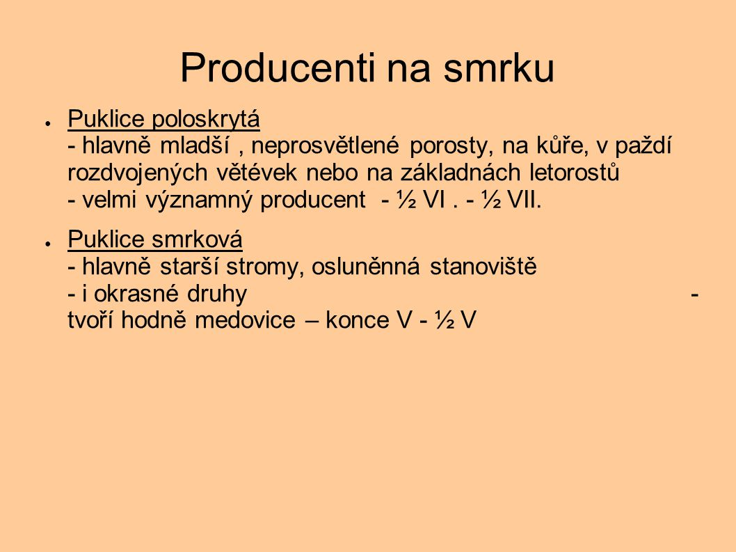 Producenti na smrku