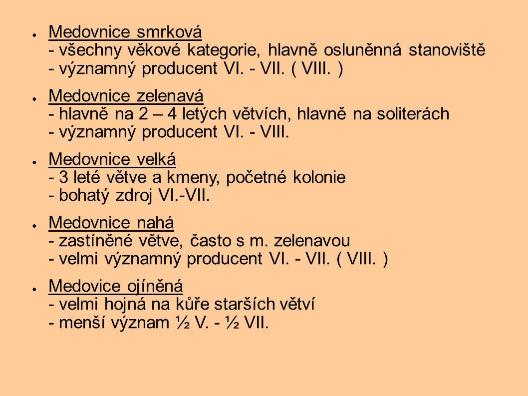 Medovnice smrková - všechny věkové kategorie, hlavně osluněnná stanoviště - významný producent VI. - VII. ( VIII. )