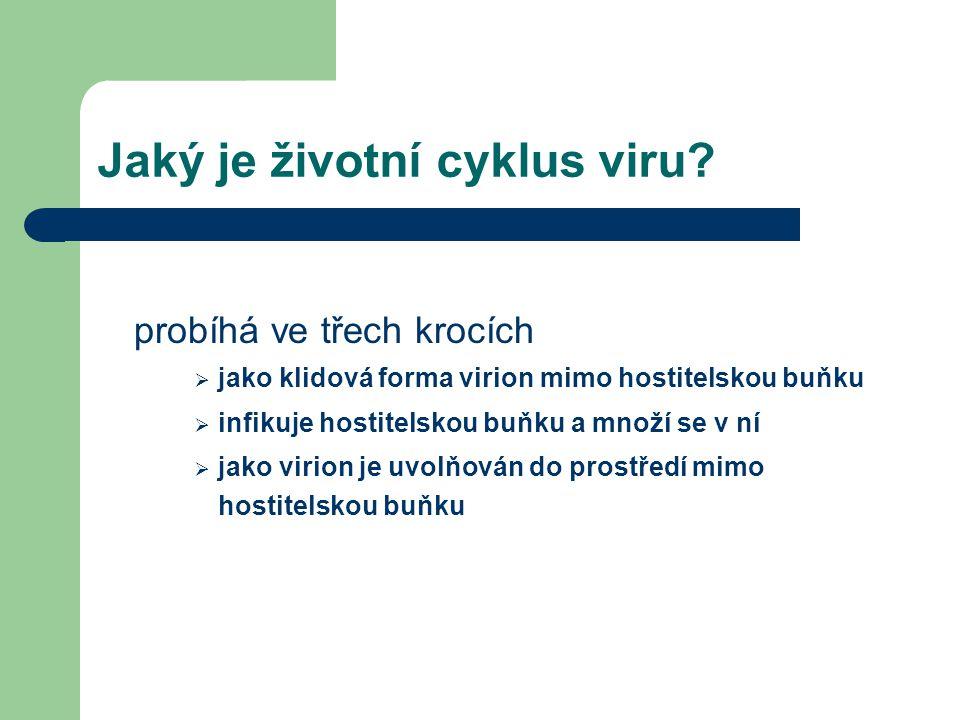 Jaký je životní cyklus viru