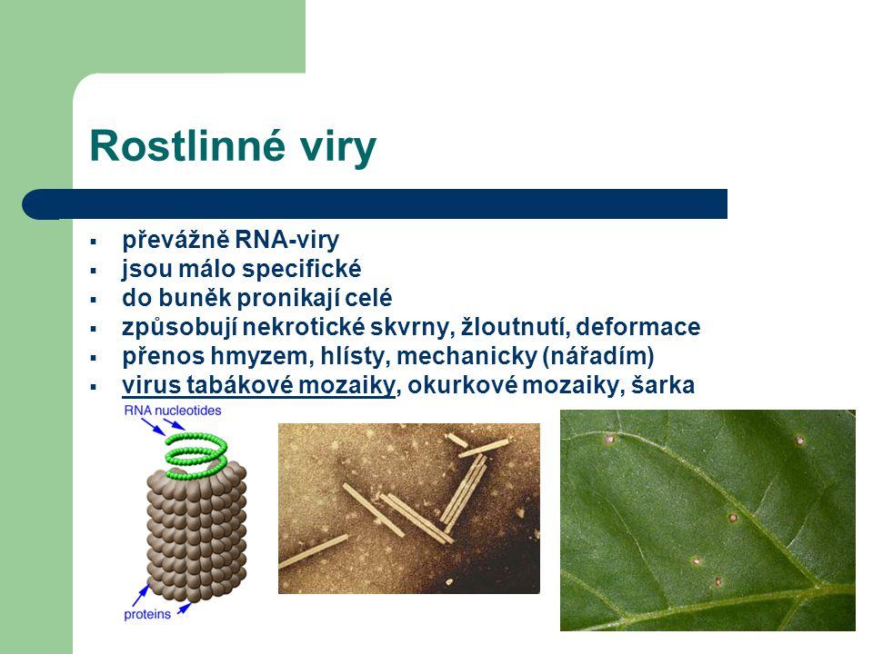 Rostlinné viry převážně RNA-viry jsou málo specifické