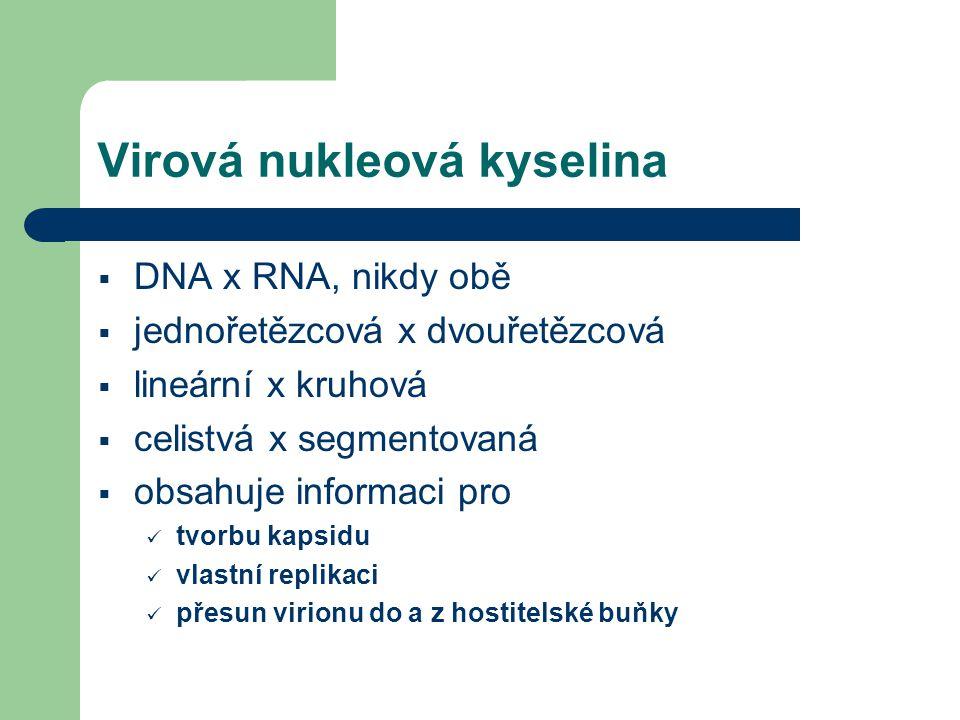Virová nukleová kyselina