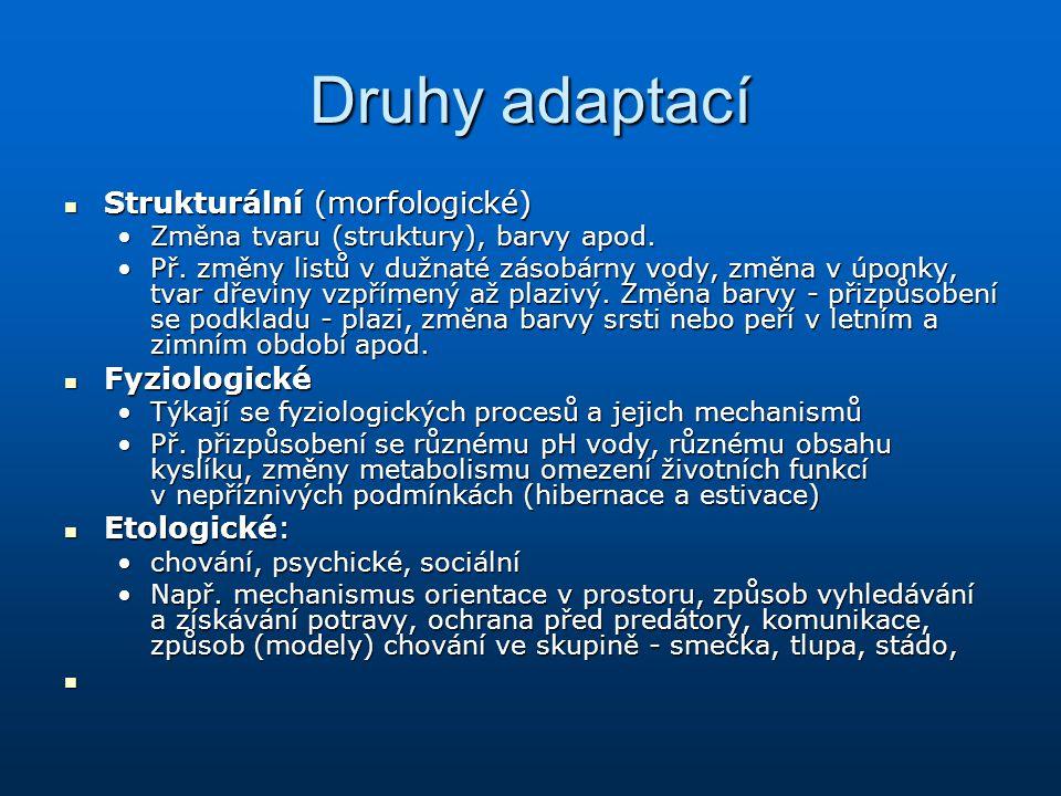 Druhy adaptací Strukturální (morfologické) Fyziologické Etologické: