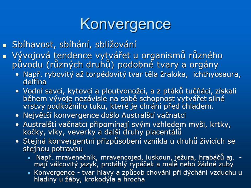 Konvergence Sbíhavost, sbíhání, sbližování