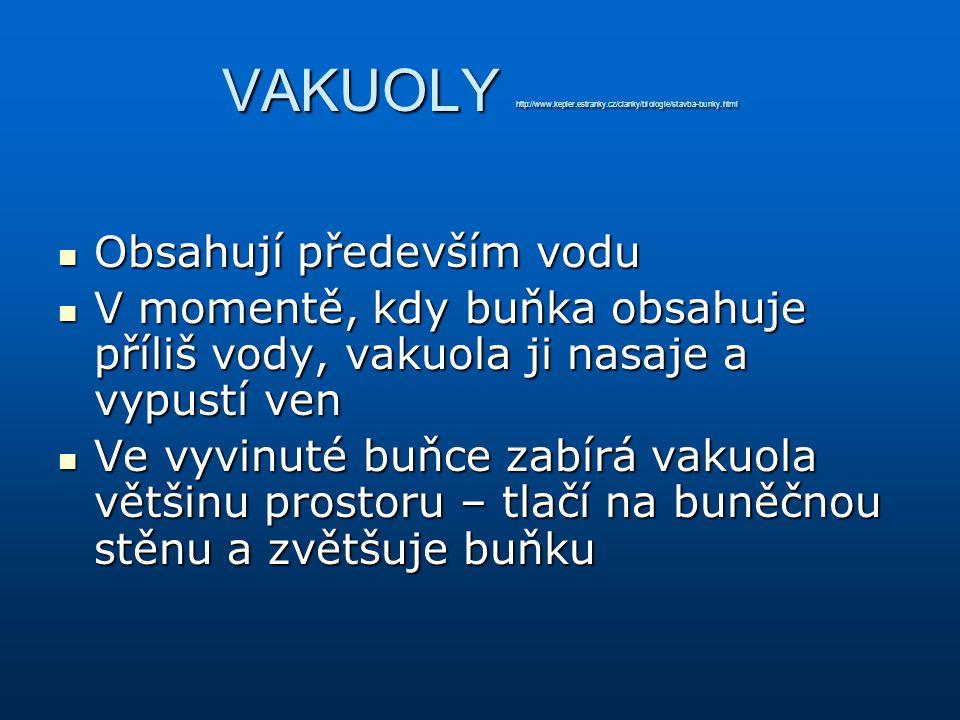 VAKUOLY http://www. kepler. estranky. cz/clanky/biologie/stavba-bunky