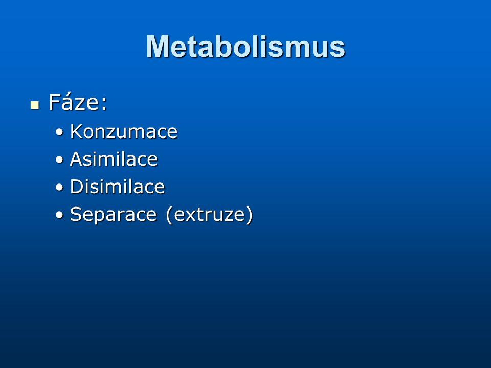 Metabolismus Fáze: Konzumace Asimilace Disimilace Separace (extruze)