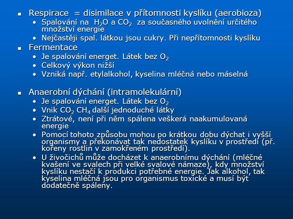 Respirace = disimilace v přítomnosti kyslíku (aerobioza)
