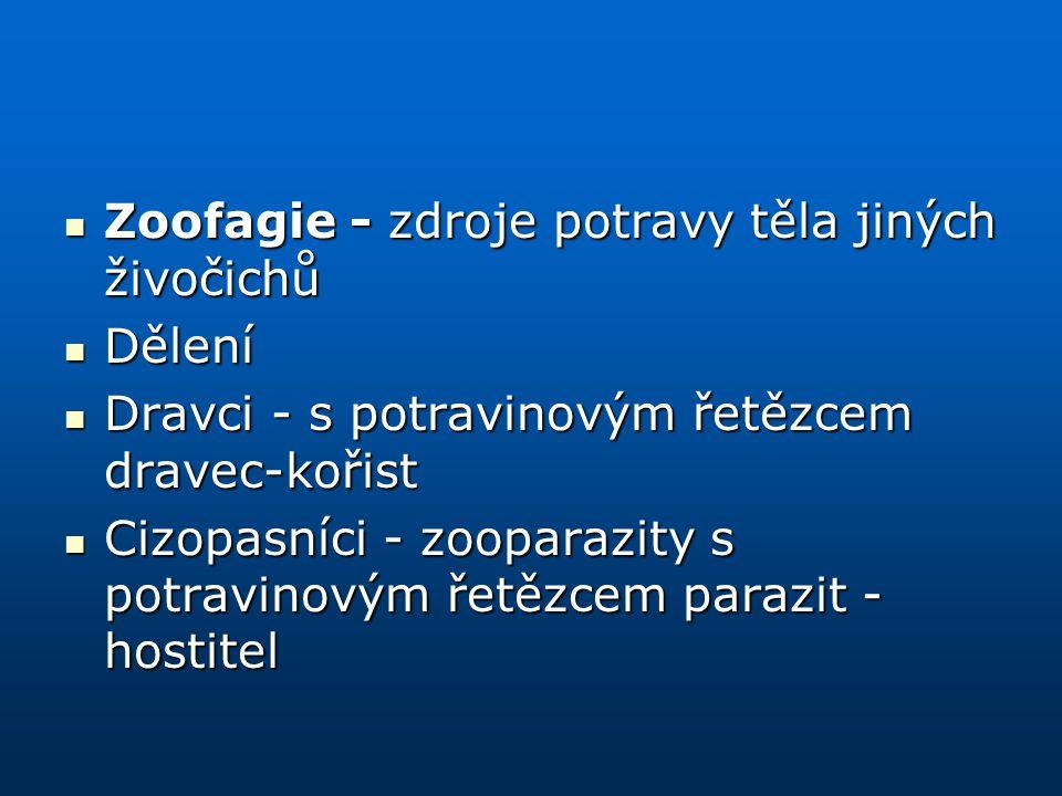 Zoofagie - zdroje potravy těla jiných živočichů