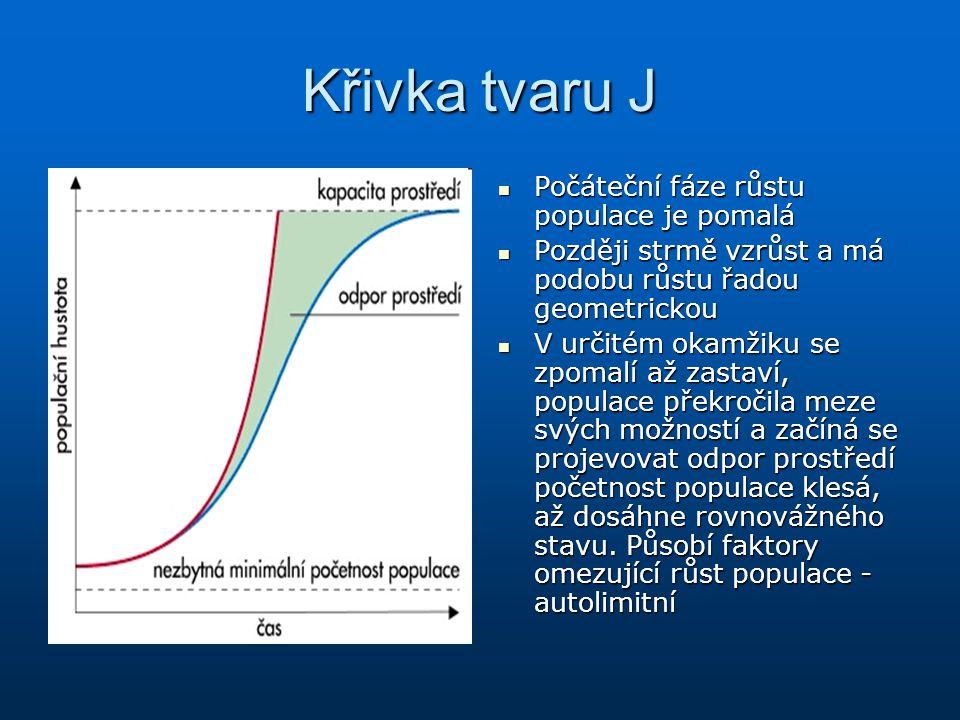 Křivka tvaru J Počáteční fáze růstu populace je pomalá