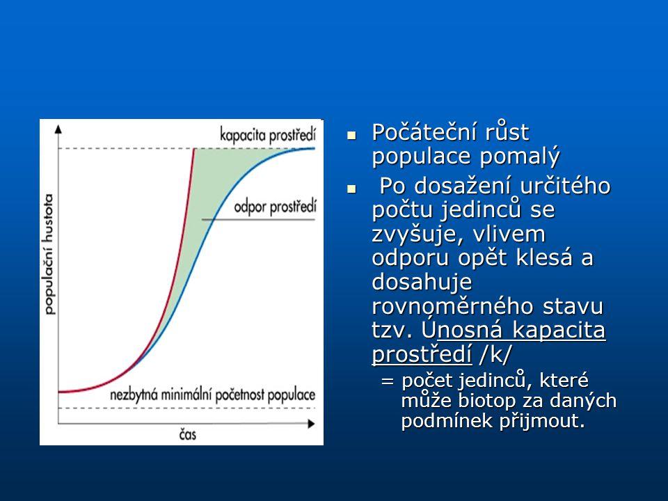 Počáteční růst populace pomalý