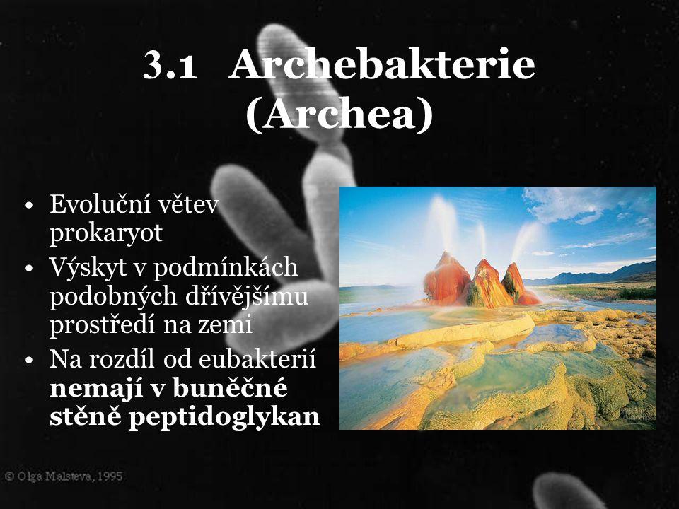 3.1 Archebakterie (Archea)