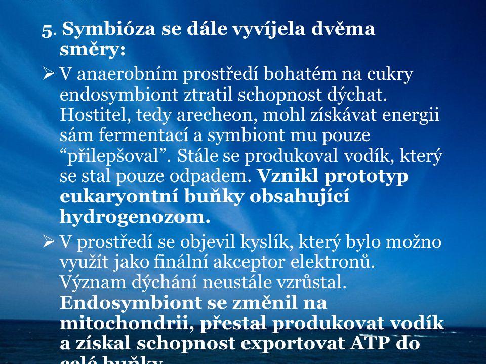 5. Symbióza se dále vyvíjela dvěma směry: