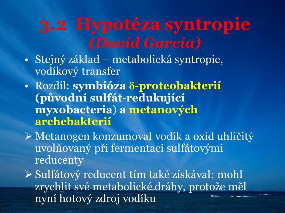 3.2 Hypotéza syntropie (David García)