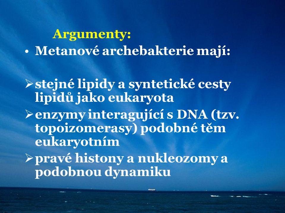 Argumenty: Metanové archebakterie mají: stejné lipidy a syntetické cesty lipidů jako eukaryota.