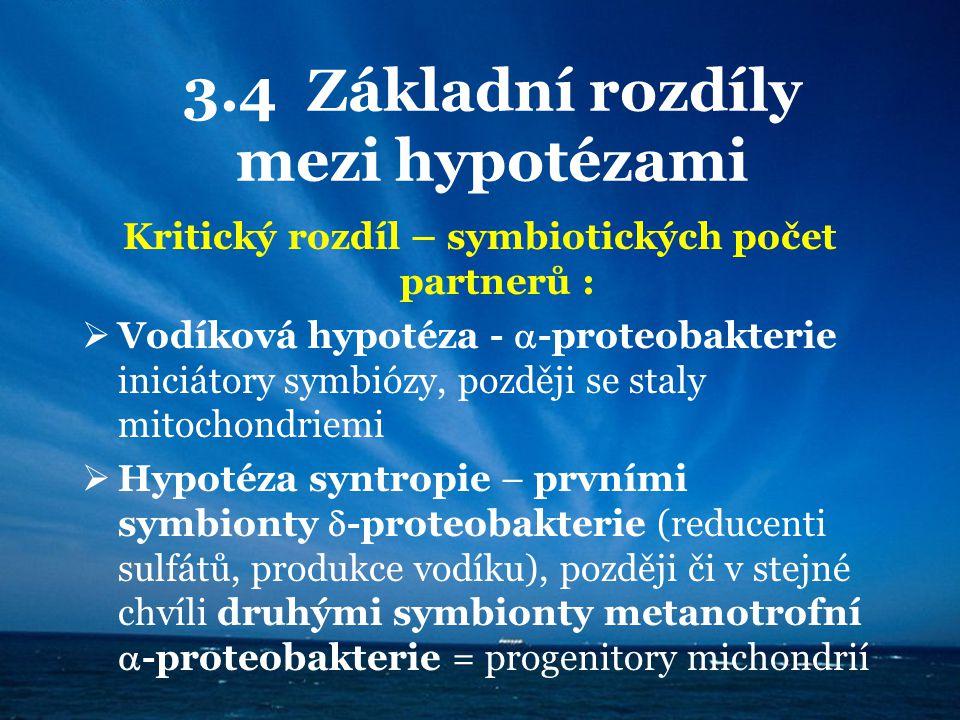 3.4 Základní rozdíly mezi hypotézami