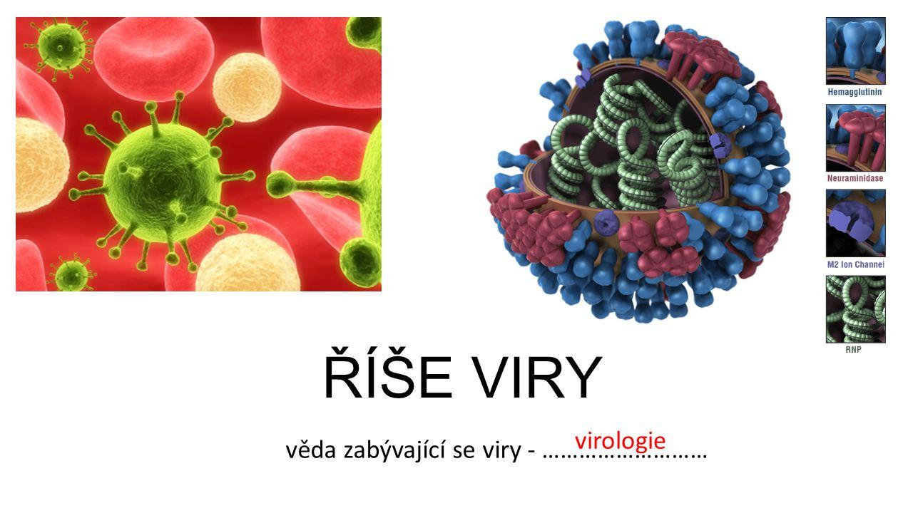 ŘÍŠE VIRY virologie věda zabývající se viry - ………………………