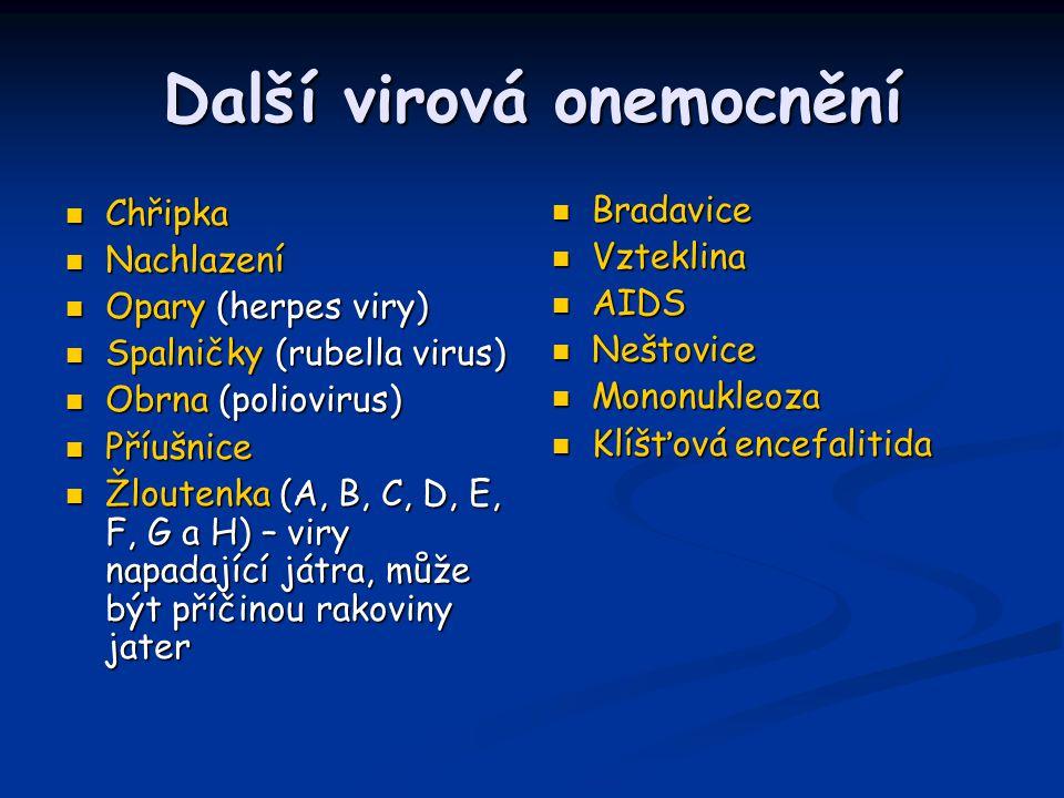 Další virová onemocnění