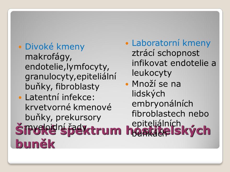 Široké spektrum hostitelských buněk
