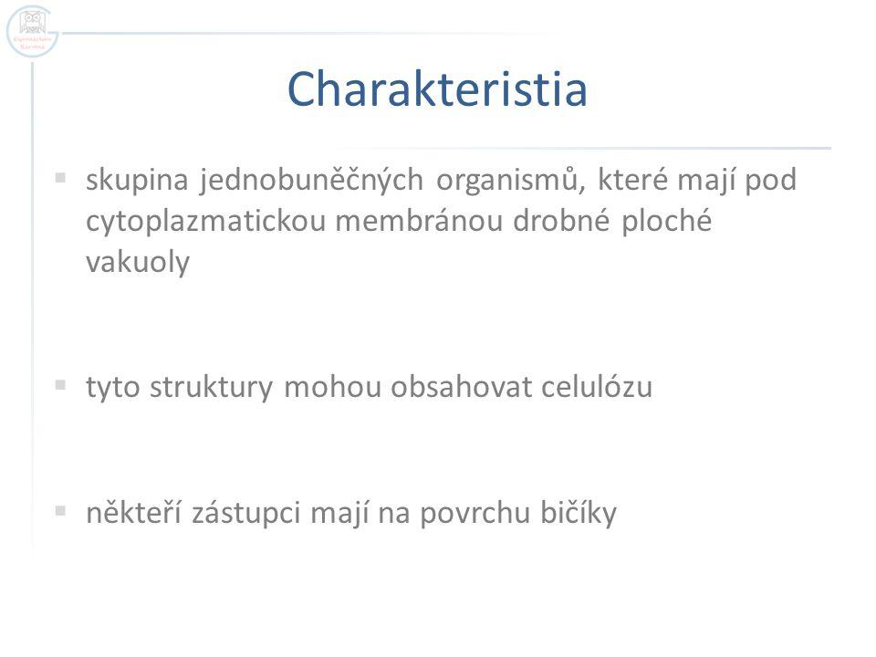 Charakteristia skupina jednobuněčných organismů, které mají pod cytoplazmatickou membránou drobné ploché vakuoly.