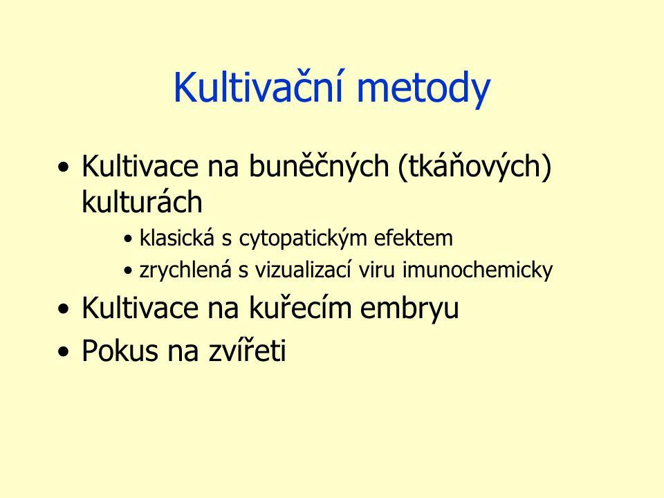 Kultivační metody Kultivace na buněčných (tkáňových) kulturách