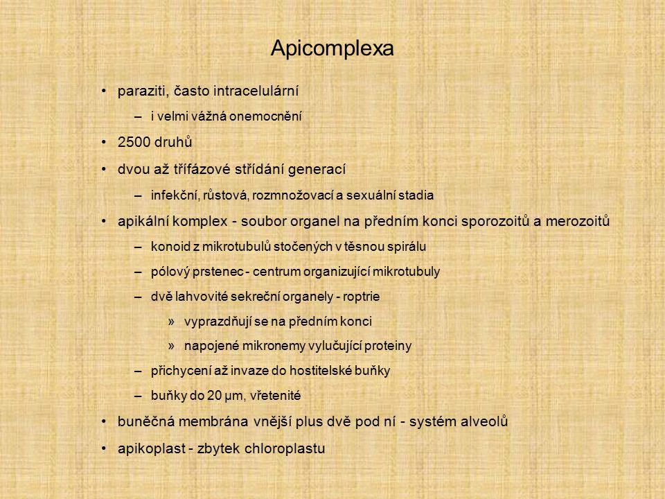 Apicomplexa paraziti, často intracelulární 2500 druhů