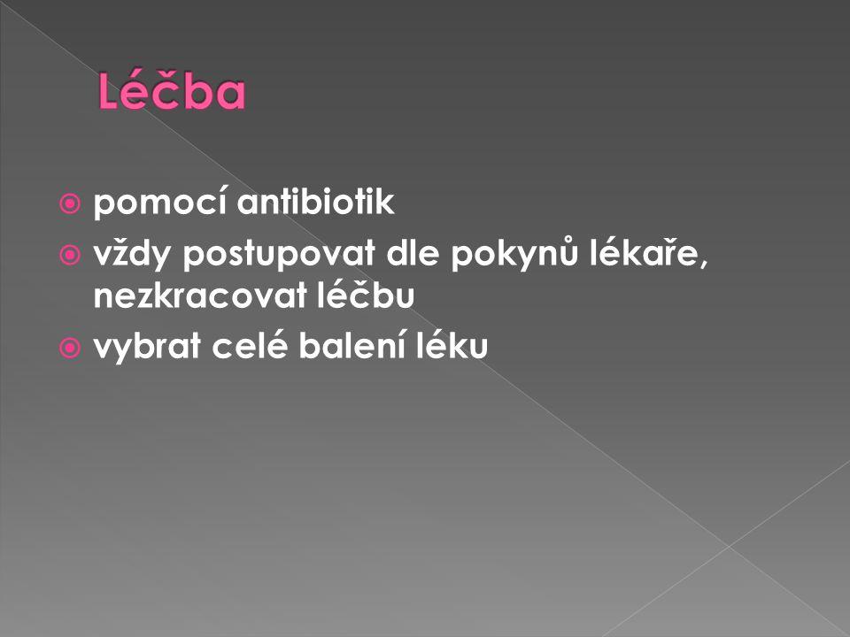 Léčba pomocí antibiotik