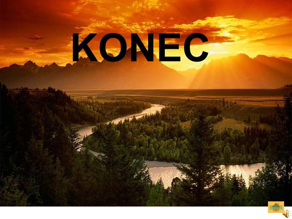 KONEC HOME