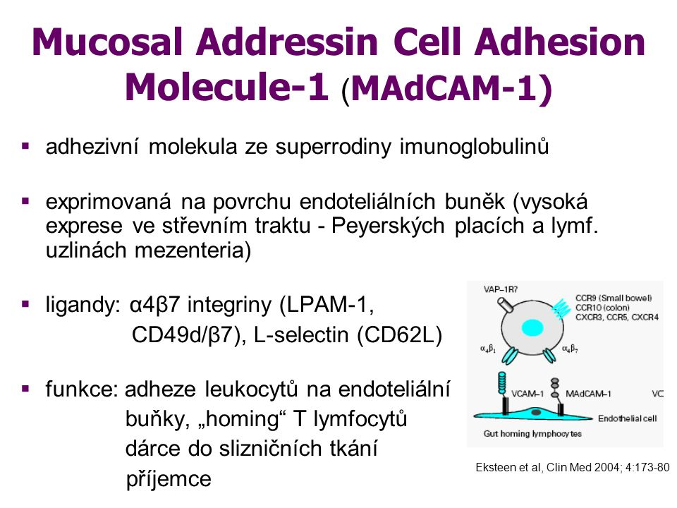Mucosal Addressin Cell Adhesion Molecule-1 (MAdCAM-1)