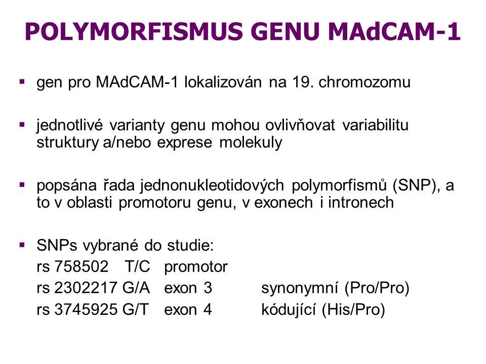 POLYMORFISMUS GENU MAdCAM-1