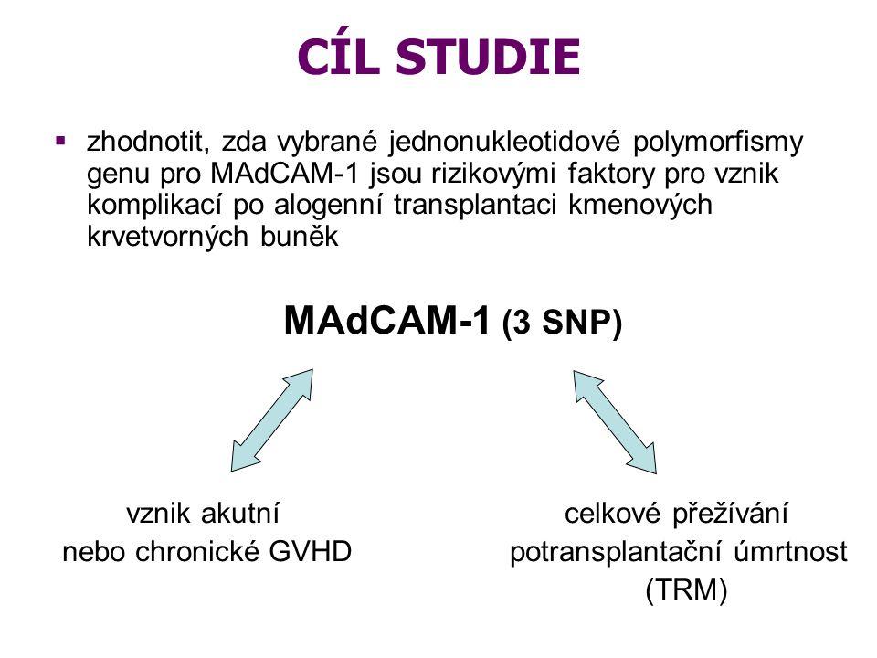 CÍL STUDIE MAdCAM-1 (3 SNP)